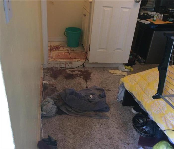 Bedroom leading into a bathroom with stained floors.